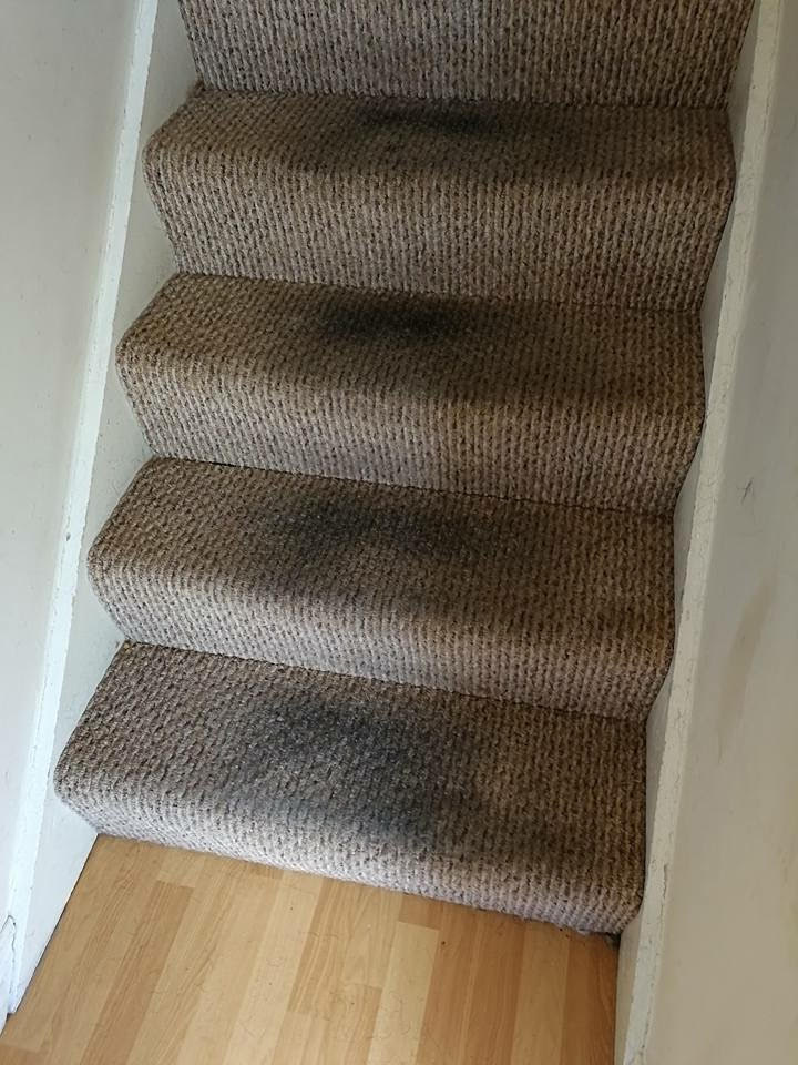 How To Get Juice Stains Out Of Carpet